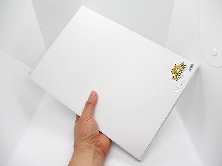 東映ヒーローネット限定・仮面ライダーダブル 10周年記念アクリルアートスタンド おもちゃライダー